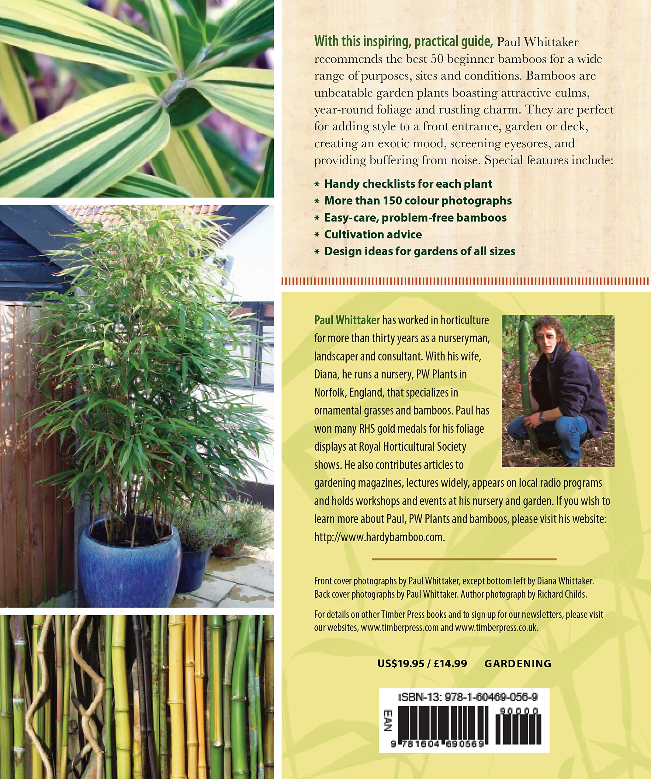Practical Bamboos: The 50 Best Plants for Screens, Containers and More