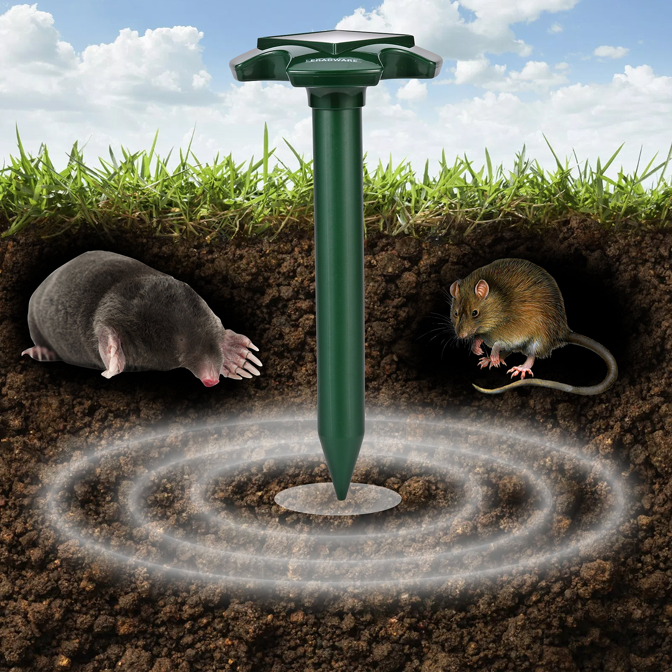 Eradware Solar Powered Mole Repellent (2 Pack), Ultrasonic Pest Repeller, Vole Rodent Repellant, Also Repels Away Snake Gopher Chipmunk, Use in Outdoor Garden Lawn, Non-toxic Eco-friendly Humane by Eradware (Image #4)