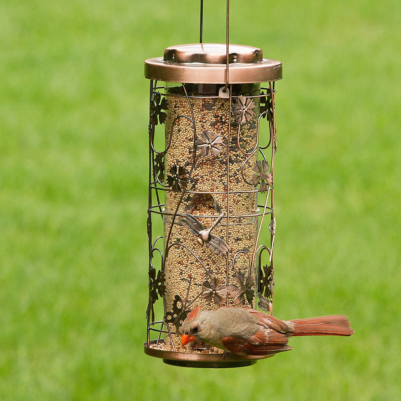 Opus 570 Comedero para pájaros con motivos naturales ...