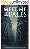 Meet Me At The Falls (Part 1 - The End)
