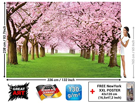 Wall Mural Cherry Blossom Tree Decorative Poster Of Spring Nature Landscape Avenue Cherry Blossoms Sakura Bloom Flowers Wallpaper Photoposter