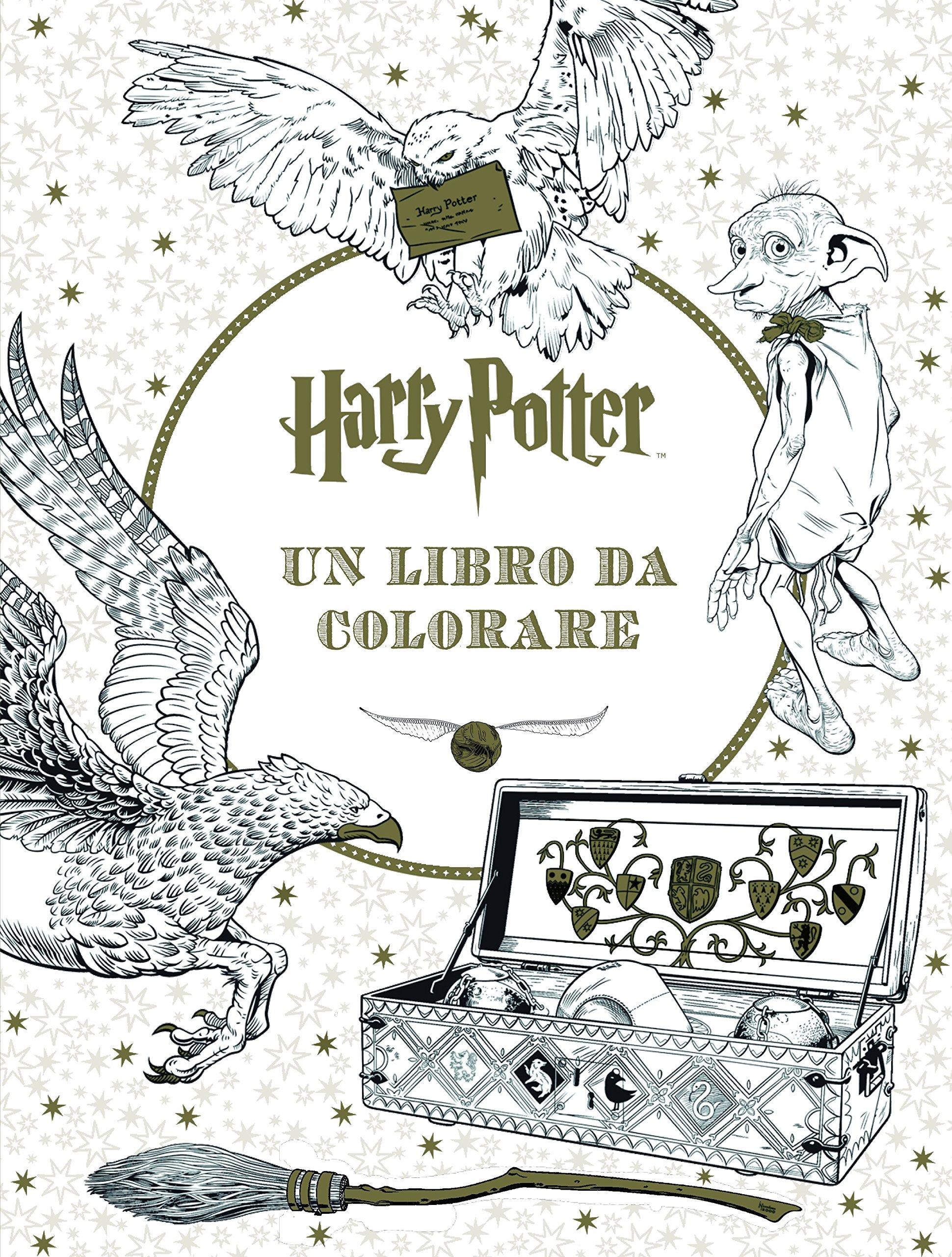 Harry Potter Un Libro Da Colorare Ediz Illustrata Aa Vv Amazon It Libri