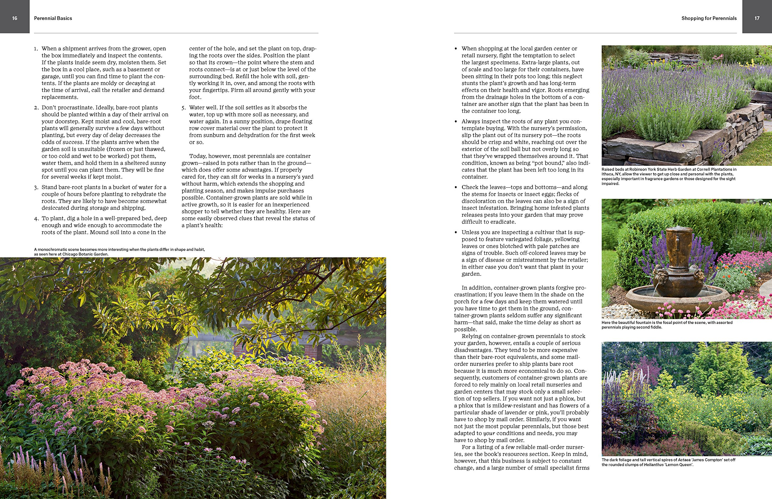 Essential Perennials: The Complete Reference to 2700 Perennials for ...
