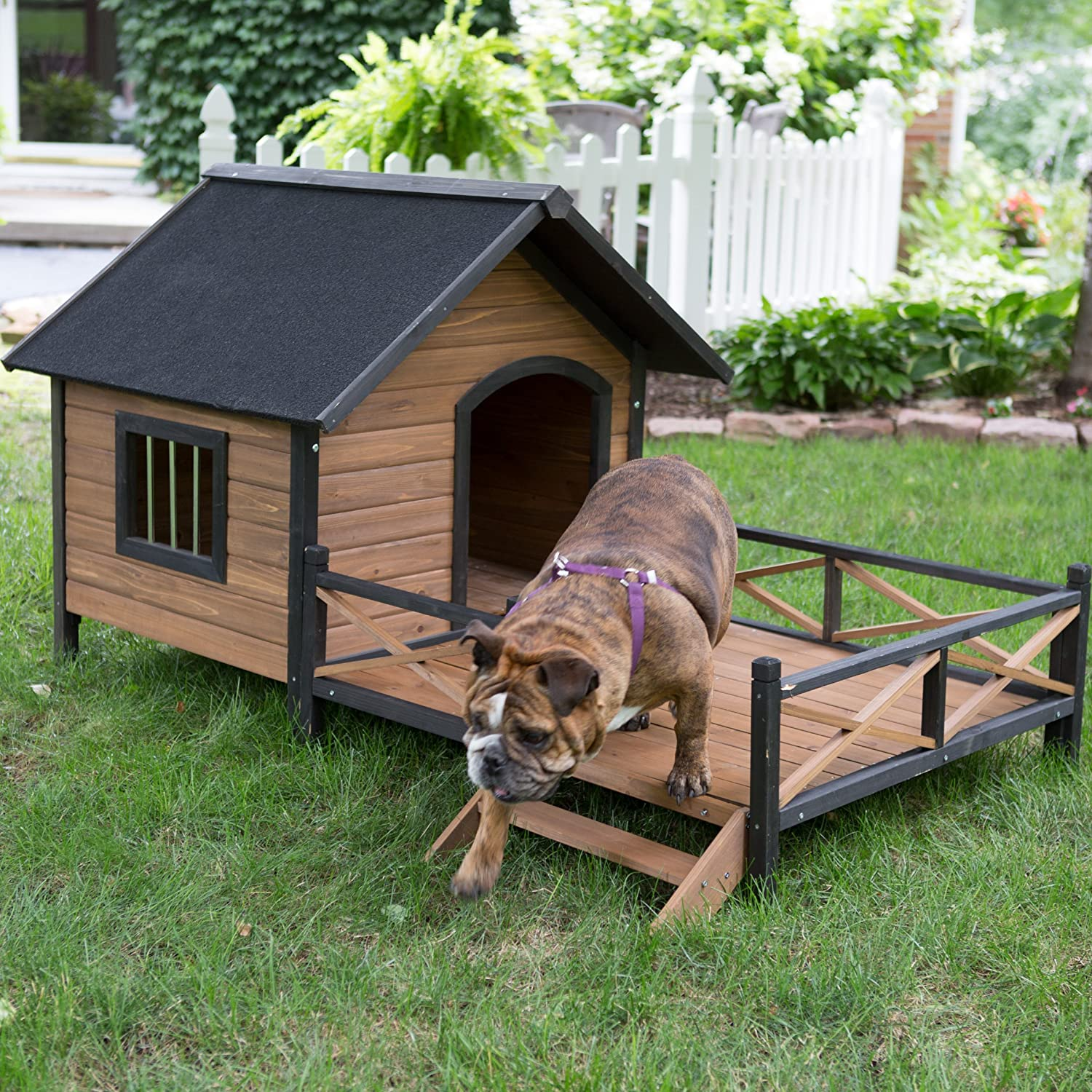amazon com large dog house lodge with porch deck kennels crates solid fir wood ious deck for sunny nap insulated keep rain out outdoor 67w x 31d x 38h