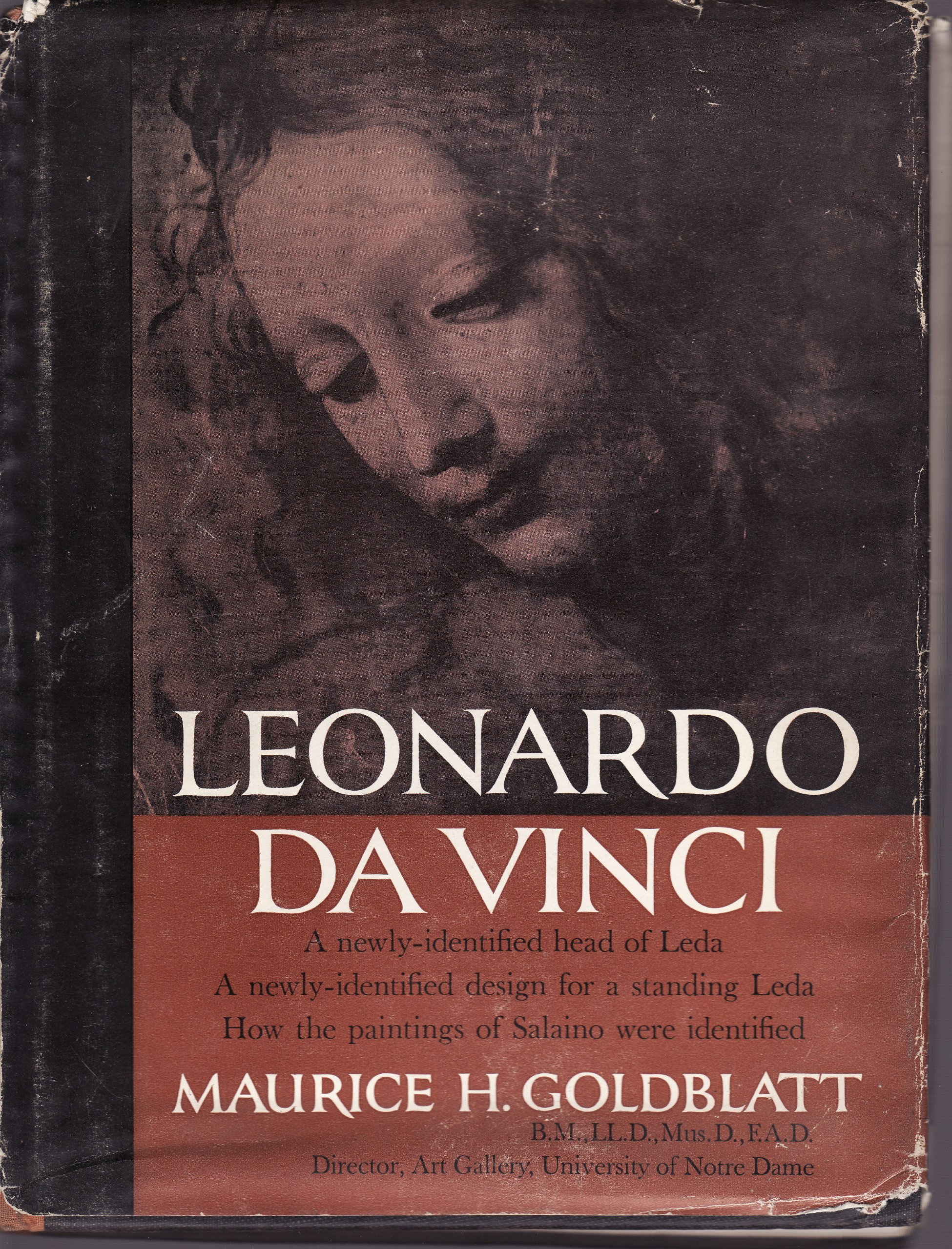 leonardo da vinci a newly identified head of leda