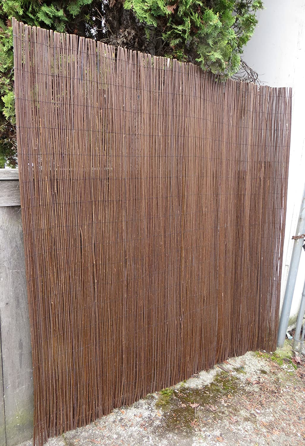 Amazon.com : Master Garden Products Willow Fence Screen, 6 by 14 ...