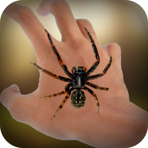 Real Spider On Hand FREE -