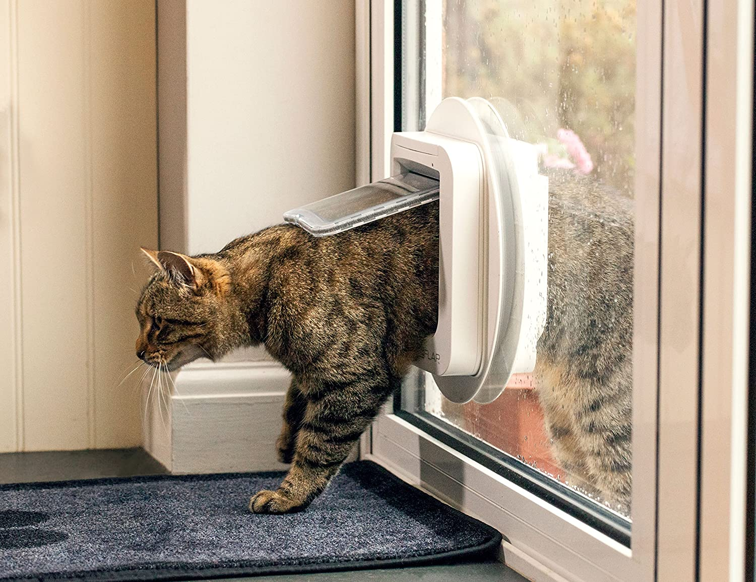 Amazon Sureflap Microchip Cat Door White Pet Doors Pet