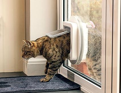 Amazon.com : SureFlap Microchip Cat Door- White : Pet Doors : Pet Supplies & Amazon.com : SureFlap Microchip Cat Door- White : Pet Doors : Pet ... Pezcame.Com