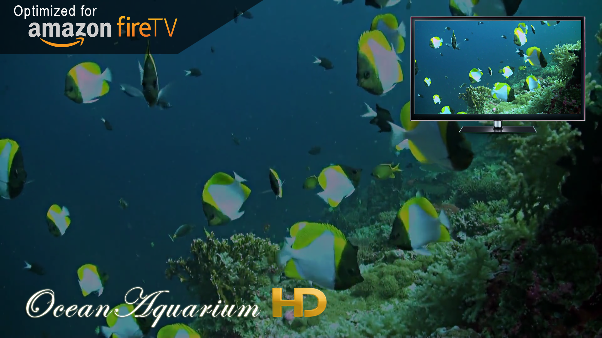 Amazon Com Beach Hd Wallpapers Appstore For Android: Amazon.com: Ocean Aquarium HD: Appstore For Android