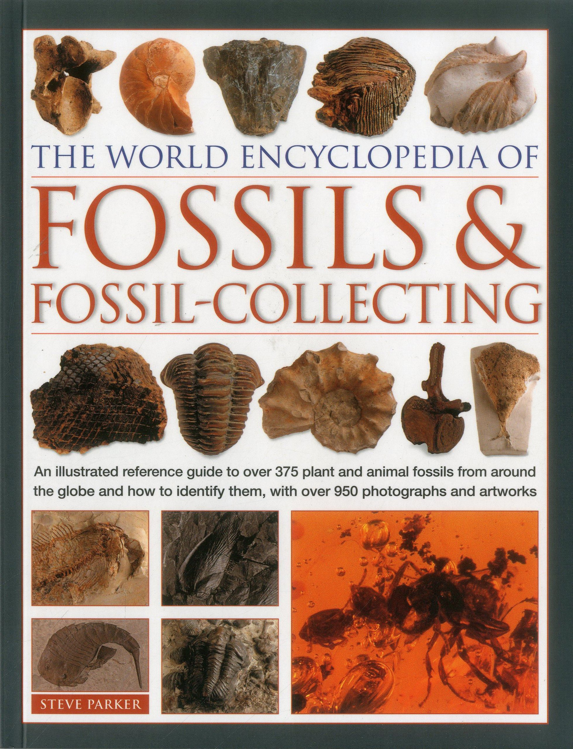 The World Encyclopedia Of Fossils Fossil Collecting An Illustrated Reference Guide To Over 375 Plant And Animal From Around Globe
