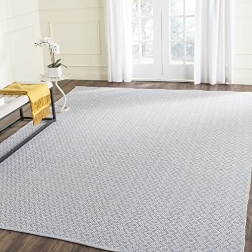 Safavieh Montauk Collection MTK716B Handmade Flatweave Ivory and Light Blue Cotton Area Rug 8 x 10