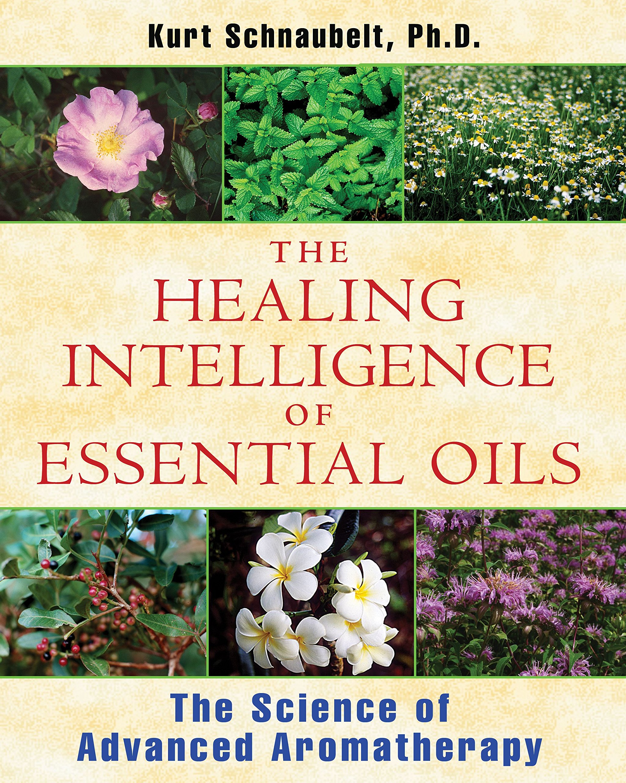 Healing Intelligence Essential Oils Aromatherapy product image