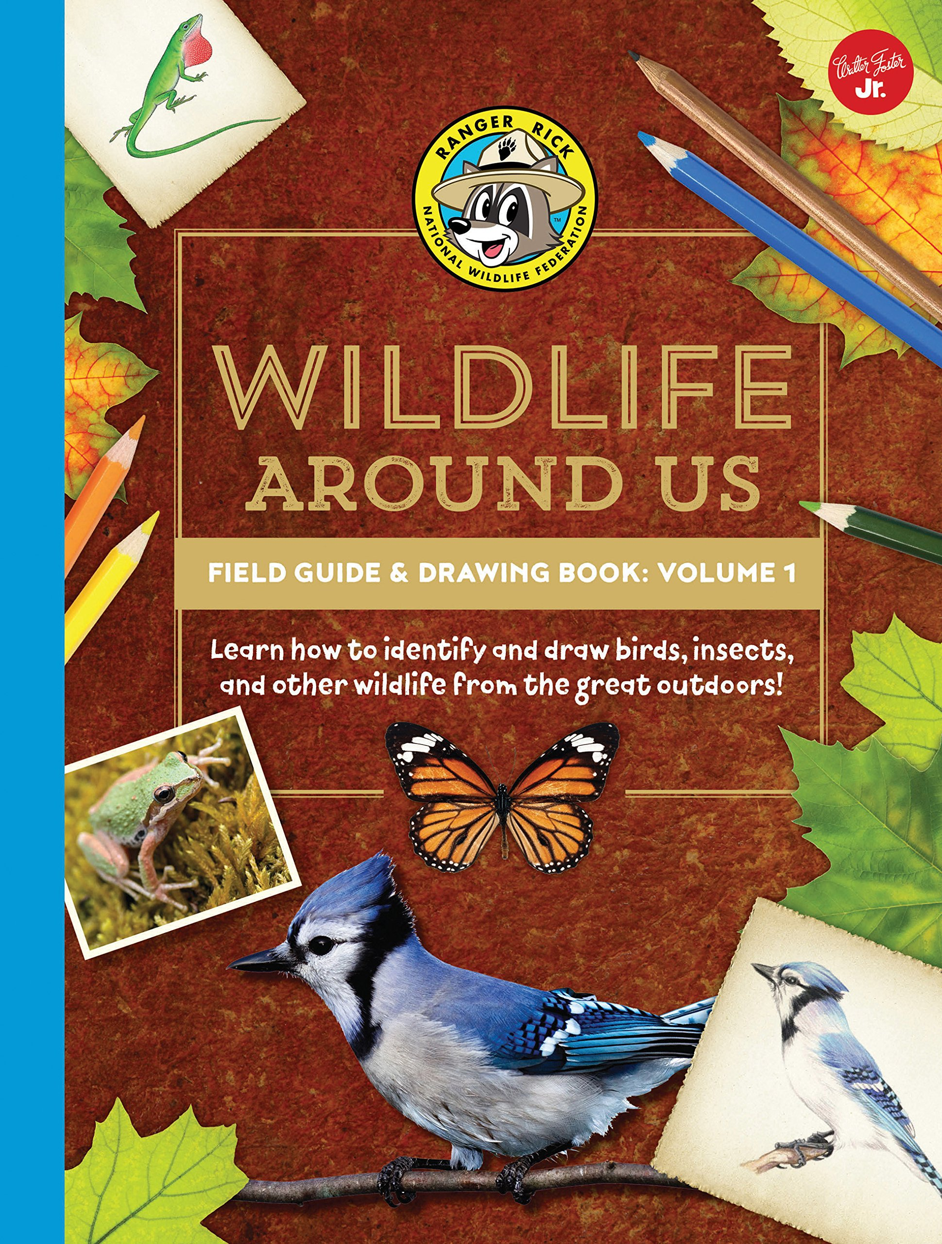 Download Ranger Rick's Wildlife Around Us Field Guide & Drawing Book: Volume 1: Learn how to identify and draw birds, insects, and other wildlife from the great outdoors! (Ranger Rick's Field Guides) pdf epub