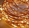 Beauty Lights 5M 50 LED Copper String Lights With USB (Warm White)