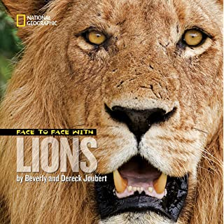 Face to Face with Lions (Face to Face with Animals)
