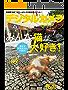 デジタルカメラマガジン 2017年7月号[雑誌]