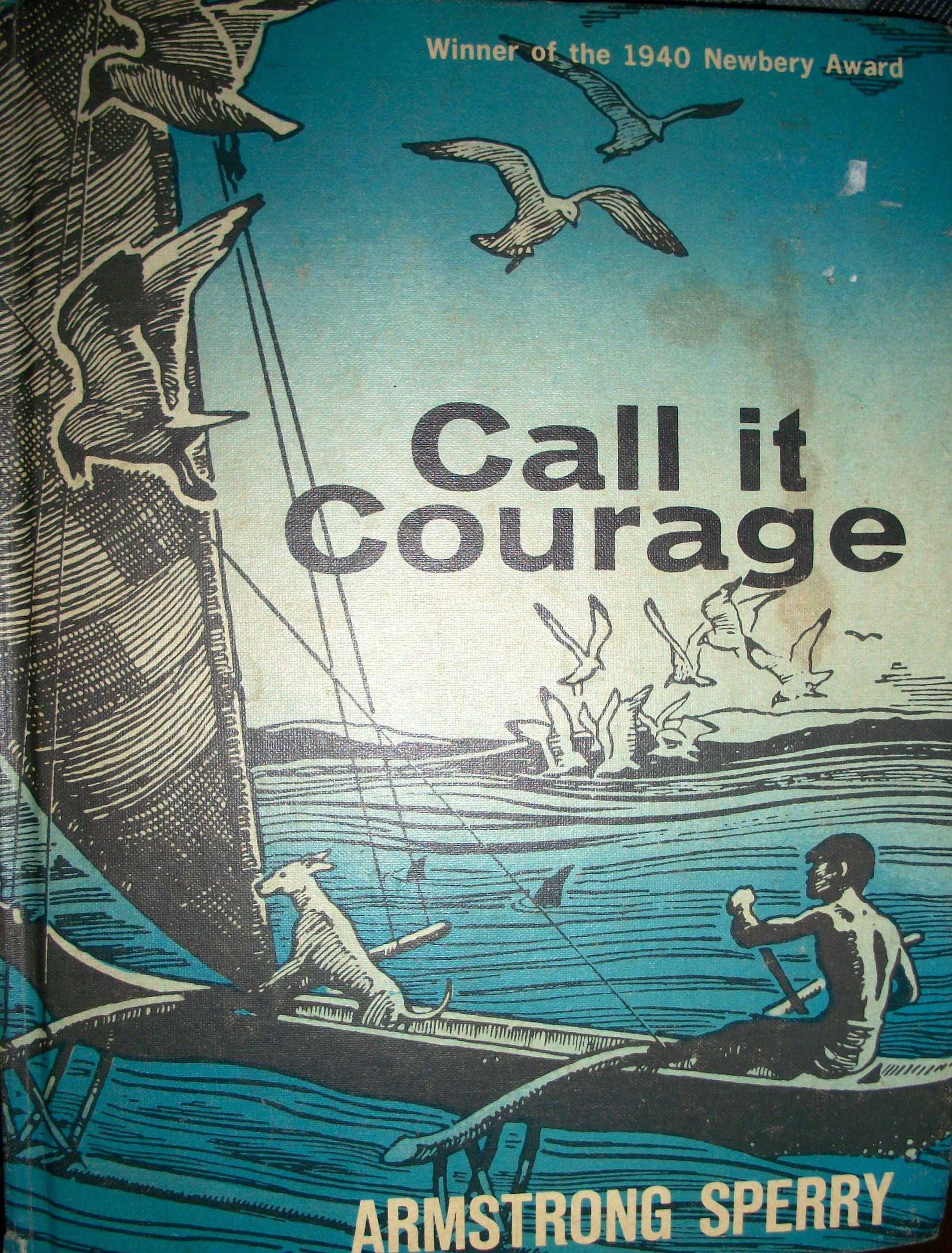Image result for call it courage amazon