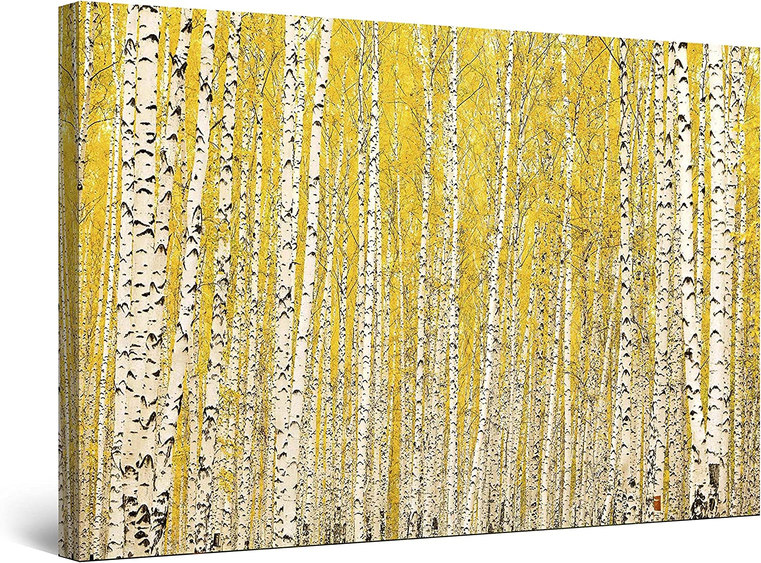 Startonight Canvas Wall Art - White Yellow Tree Forest Nature, Framed 32 x 48 Inches
