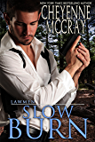 Slow Burn (Lawmen Book 3)
