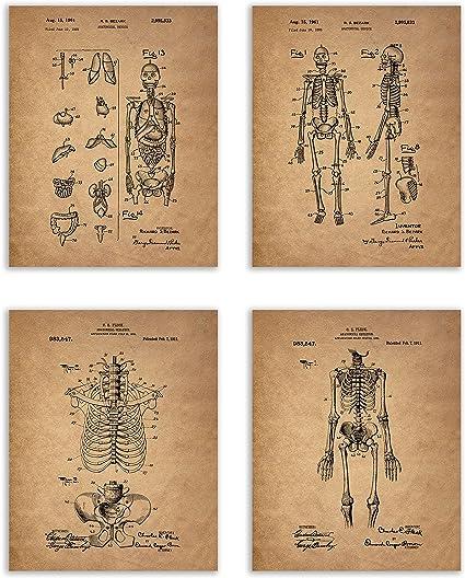 Official Skeleton Model US Patent Art Print Medical Doctor Nurse Skull Bones 135