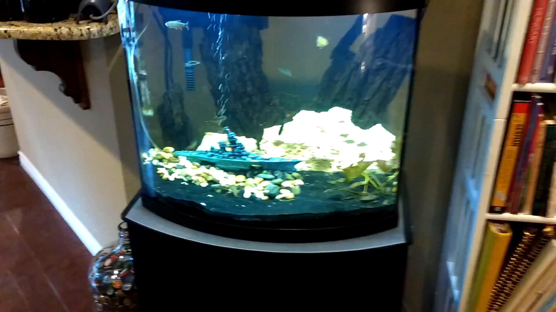 Penn plax battleship aquarium fish tank for Fish tank decorations amazon