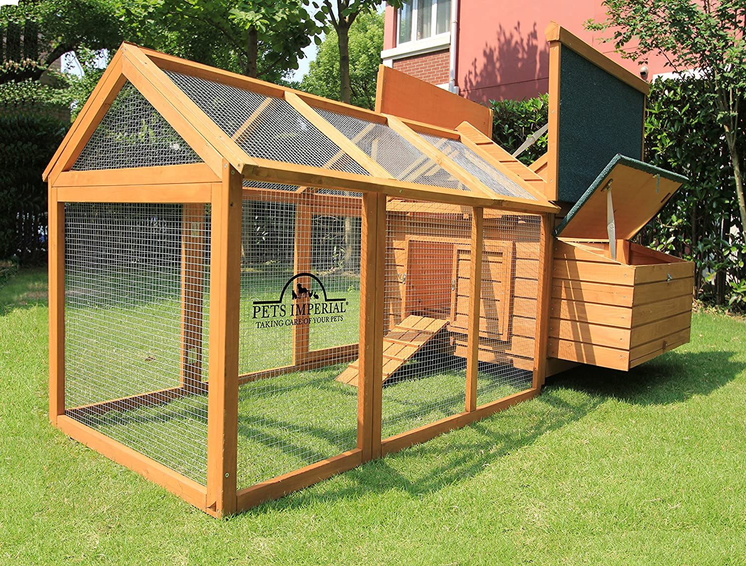 amazon com pets imperial single savoy large chicken coop nest