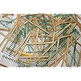 REES52 8174 800 Pieces 40 Values Assorted Mixed Carbon Film Resistors Lot 5 Percent 0.25W Resistor Kit