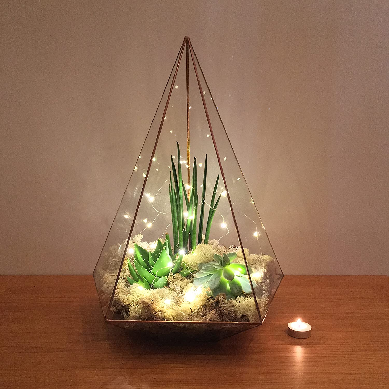 49cm High Extra Large Copper Jewel Terrarium With Live Succulent