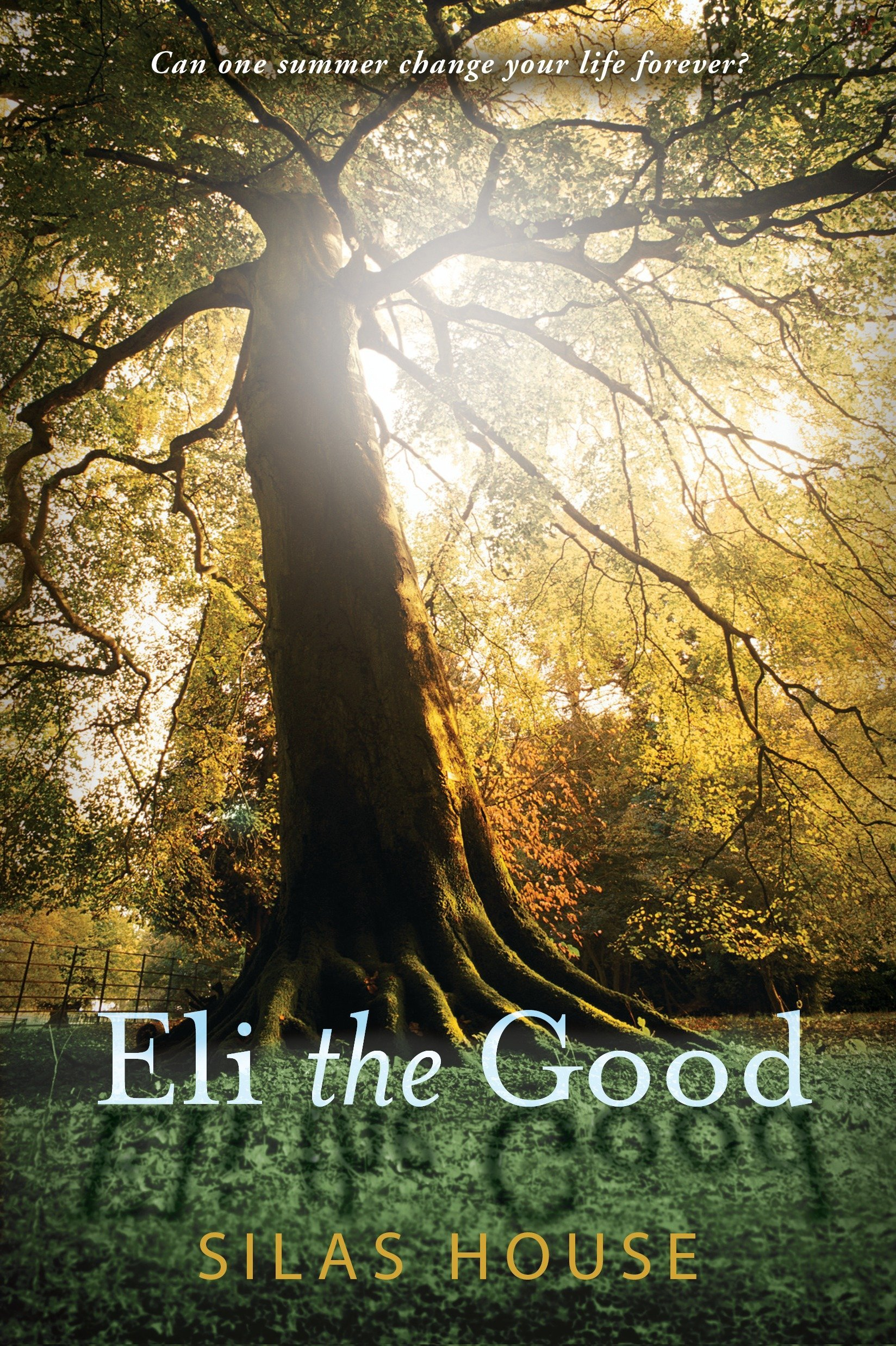 Eli the Good pdf epub