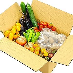 秋田県産 無農薬 野菜 小玉さんの 旬の採れたて 新鮮野菜 おまかせ 詰め合わせセット 80サイズ 1箱