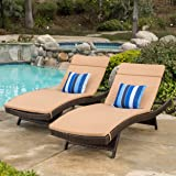 Christopher Knight Home 602 Salem Chaise Outdoor Lounge (Set of 2)