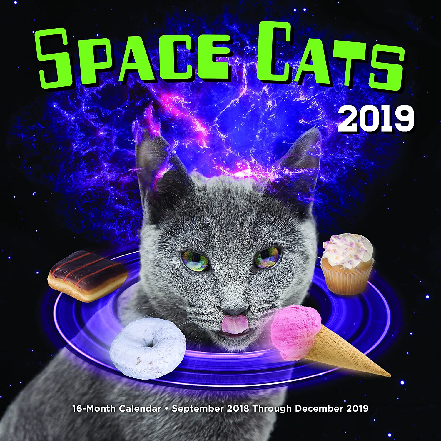 Space Cats 2019: 16-Month Calendar - September 2018 through December 2019 Editors of Rock Point 1631064738 Calendars NON-CLASSIFIABLE