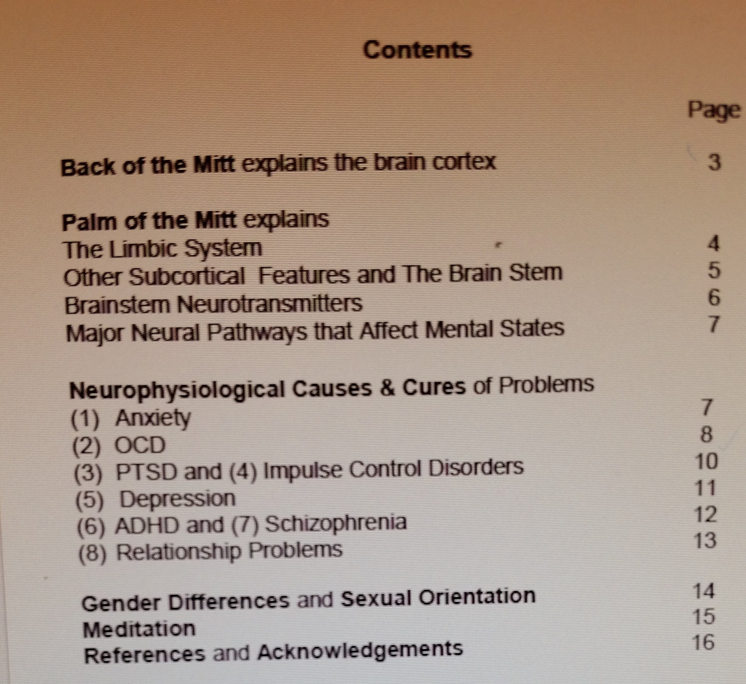 Handy Brain Model B-1.2 (adult medium)