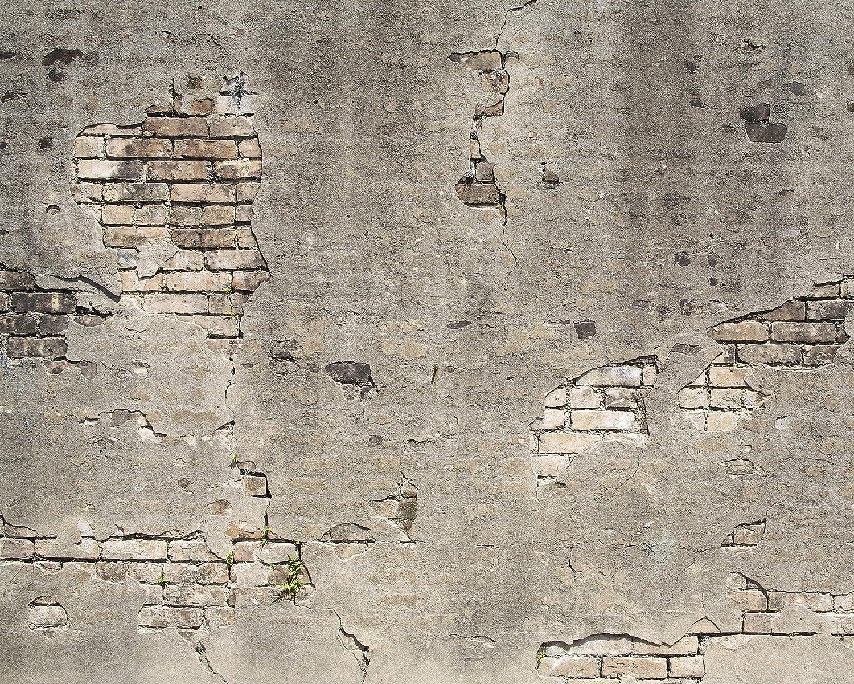Wall Rogues Wr50520 Broken Concrete Paste The Wall Wallpaper Mural 300cm X 240cm Grey