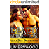 Deadly Seduction (Wolf Pack Protectors Book 3)