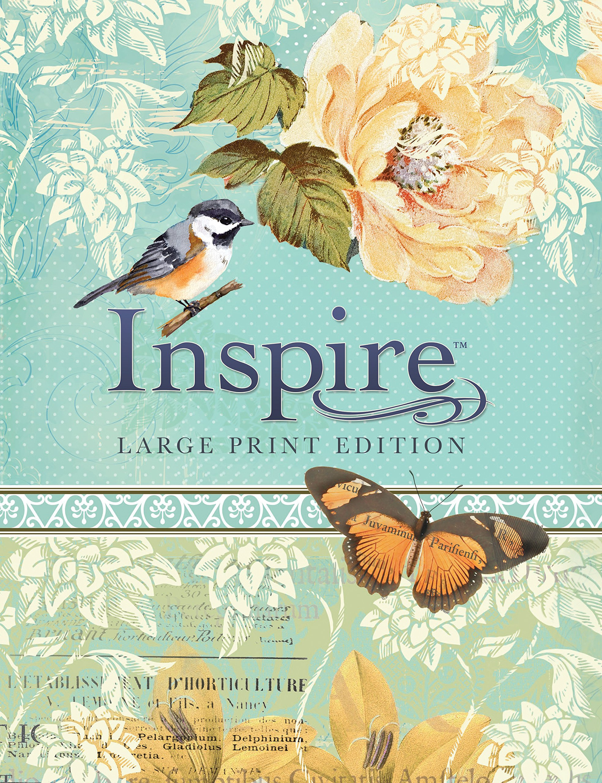 Inspire Bible Large Print NLT: The Bible for Coloring & Creative ...