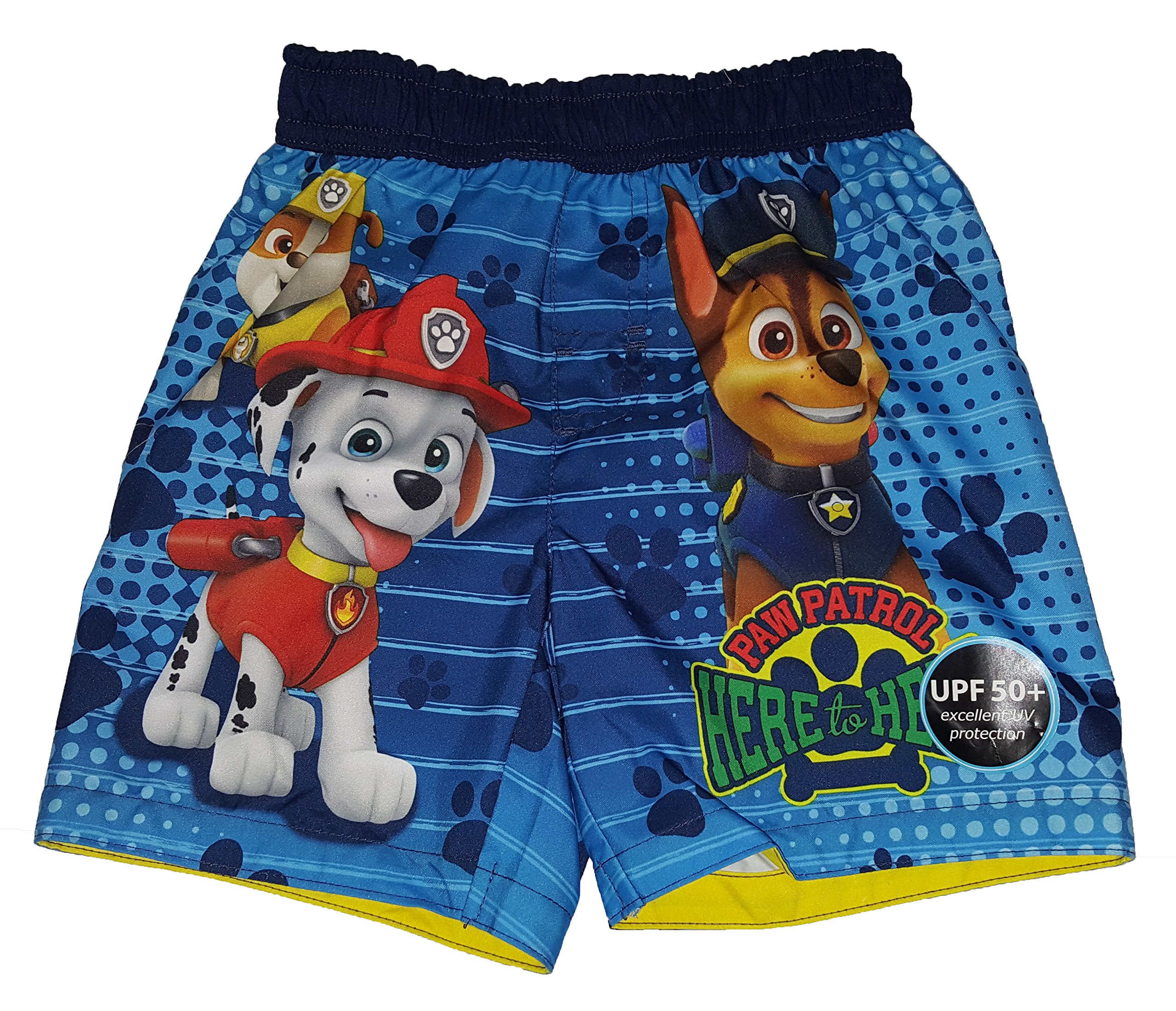 Toddler Boys Paw Patrol Here to Hear Blue Swim Short Trunk - 2T