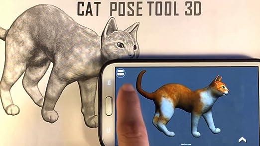 cat pose tool 3d скачать бесплатно