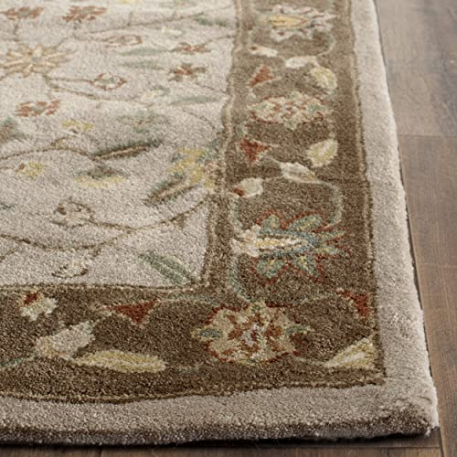 Safavieh Total Perform Collection TLP722B Hand-Hooked Ivory and Taupe Area Rug 8 x 10