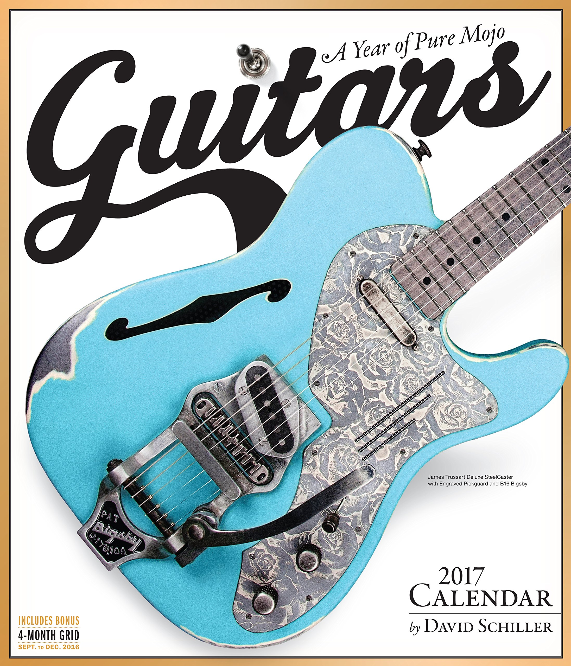 Guitars Wall Calendar 2017: David Schiller: 9780761188179: Amazon ...