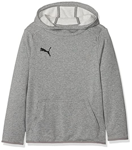 7c34f0e43708 Puma Children s Liga Casuals Hoody Jr Jumper  Amazon.co.uk  Sports ...
