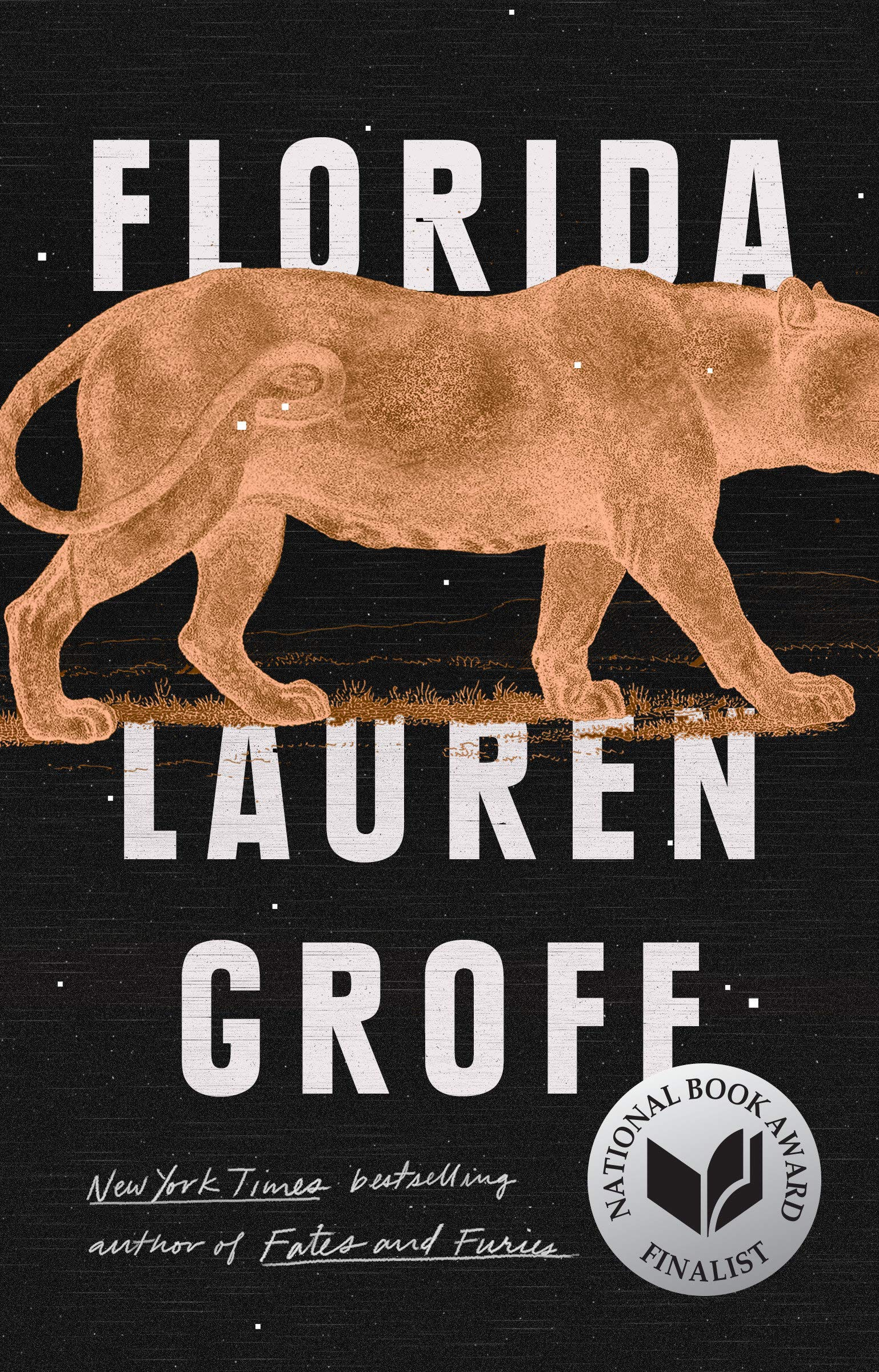 Florida: Groff, Lauren: 9781594634512: Amazon.com: Books