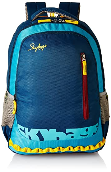 40fac30294 Skybags Blue Laptop Backpack (LPBPVI1EBLU)  Amazon.in  Bags