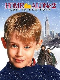 Amazoncom Home Alone 2 Lost In New York Joe Pecsi Rob
