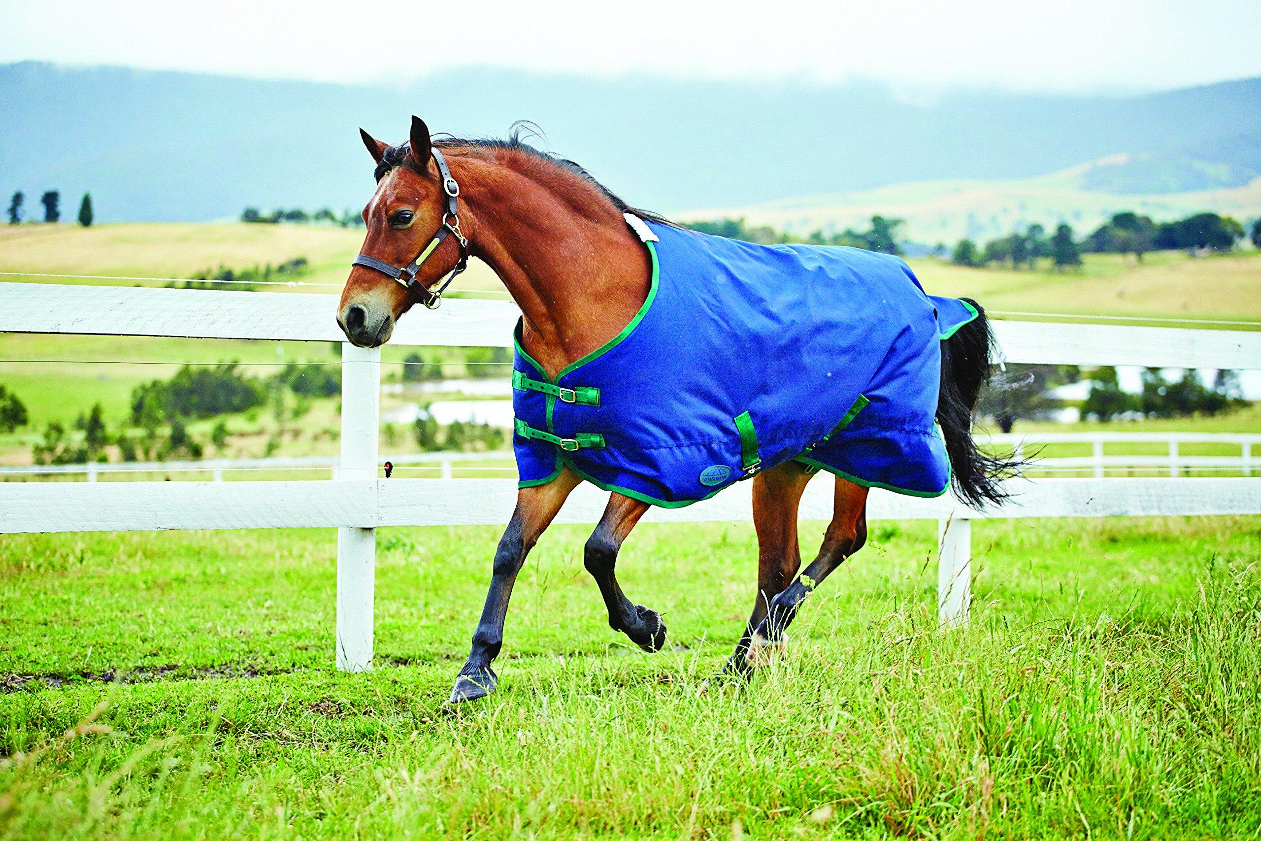 Weatherbeeta Genero 1200D Standard Neck Medium Weight Pony Blanket