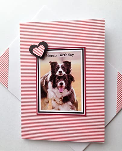 Amazon COLLIE SHEEPDOG GREETINGS Dog Card Happy Birthday