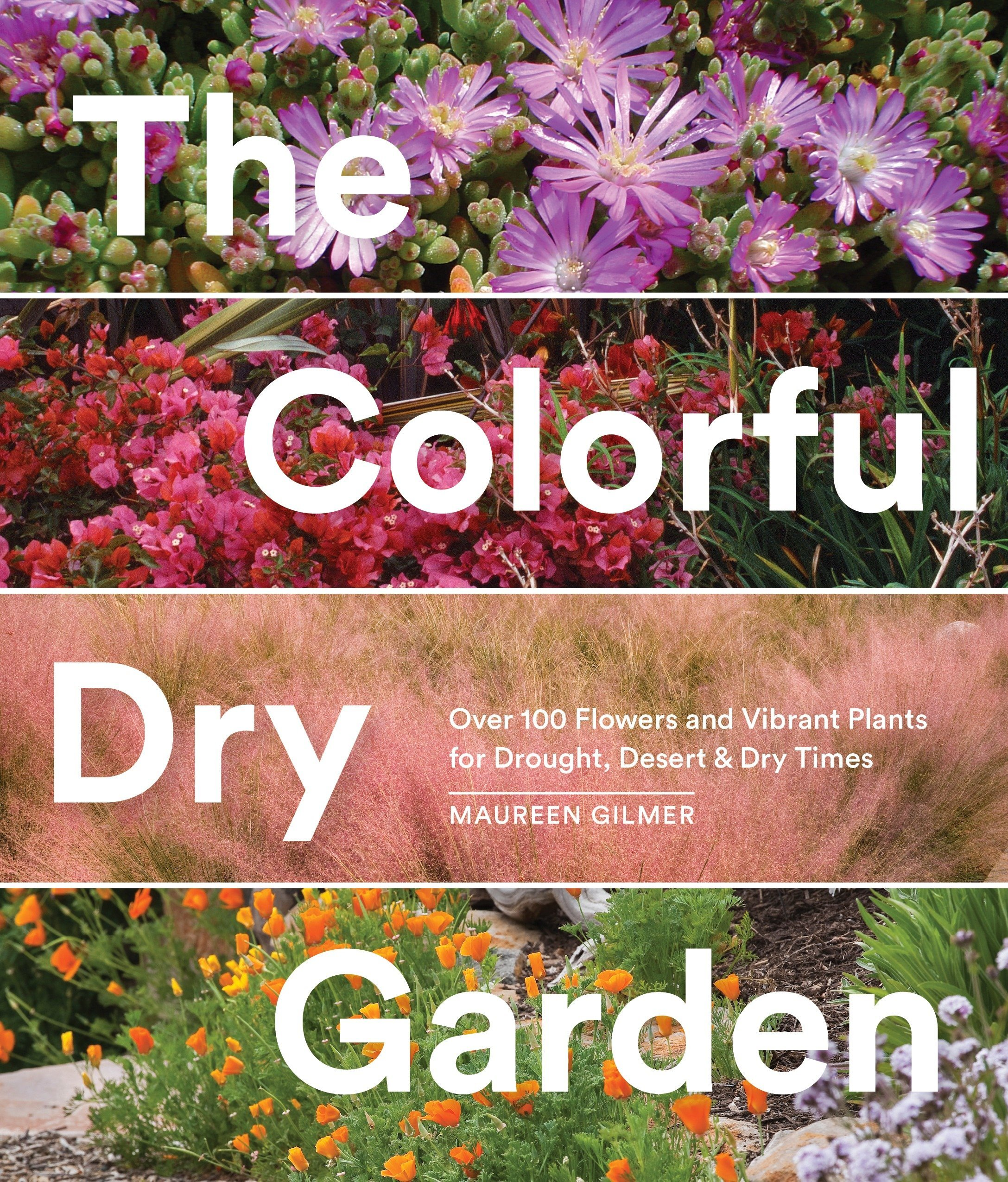 The Colorful Dry Garden Over 100 Flowers And Vibrant Plants For