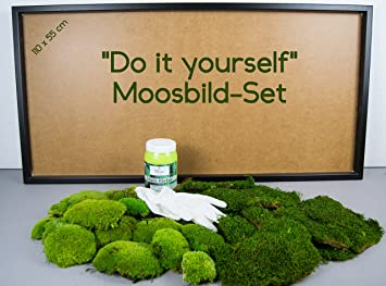 DIY Moosbild Selber Machen, Wandbilder Selber Kleben, Moosbilder Selbst  Gestalten Do It Yourself Set