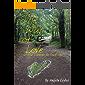 The Way of Love: on the Camino de Santiago